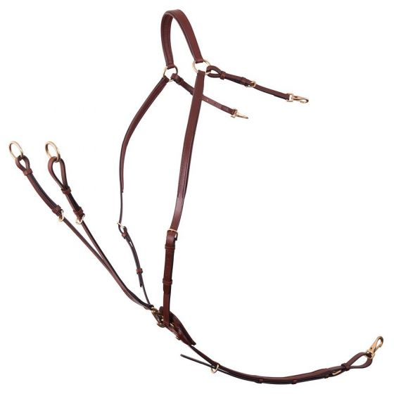 BR Cuirasse Cuirasse Cuirasse Collier de Chasse Collier de Chasse Rayleigh