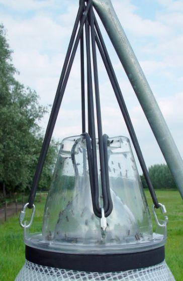 Hofman Trappe à taons Loer anneau de suspension desserré