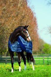 Doublure Horseware Pony 100 g