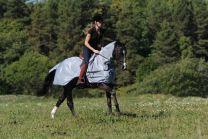 Bucas Buzz-Off riding rug