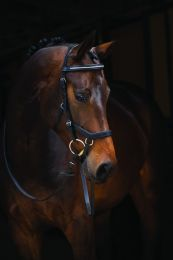 Bridon de compétition Horseware Rambo Micklem Diamante