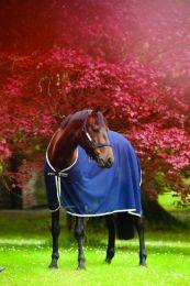 Chemise séchante Horseware Horseware Amigo maille filet