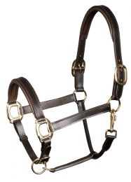 Harry's Horse Licol cuir, padded