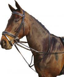 Harry's Horse thiedemann enrenement