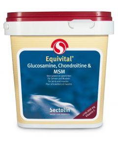 Sectolin Équivital Glucosamine, Chondroïtine & MSM 1 kg