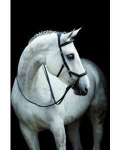 Rênes de compétition Horseware Rambo Micklem en cuir anglais