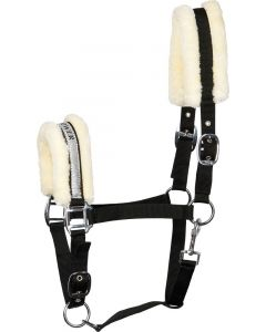 Harry's Horse Halter Paroles V