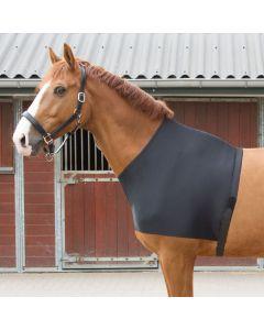 Harry's Horse Protecteur de poitrine lycra