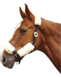 Harry's Horse Fourreau mérinos pour licol cream