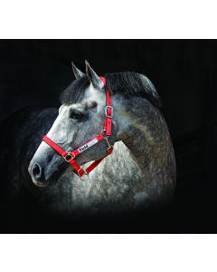 Licol Horseware Field Safe