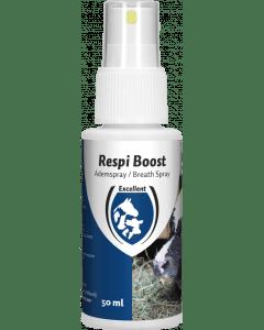 Hofman Respi Boost (Spray respiratoire)