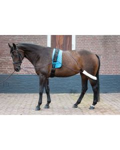 Harry's Horse Aides pulmonaires