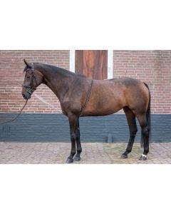 Harry's Horse Longues rênes soft