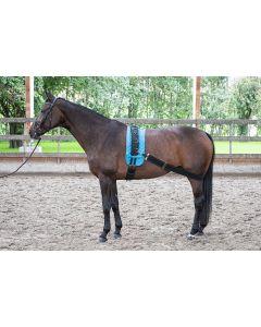 Harry's Horse Sangle élastique