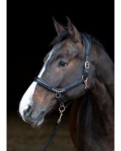 Harry's Horse Licol en cuir Rosegold anatomique