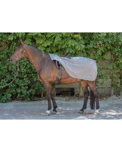 Harry's Horse Couverture d'exercice en molleton Teddy