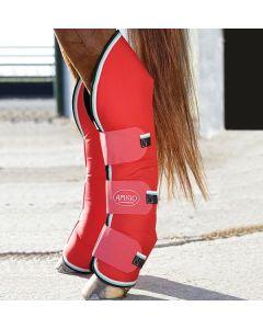 Protège-boulets et tendons Horseware Amigo