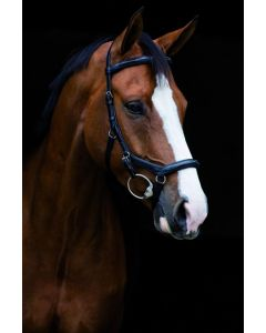 Horseware Products LTD Rambo Micklem Deluxe Comp