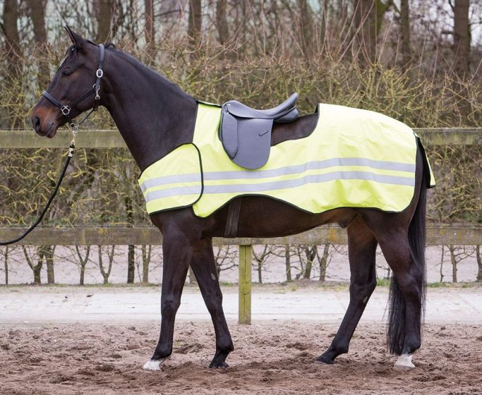 Harry's Horse Feuille d'exercice Réfléchissant